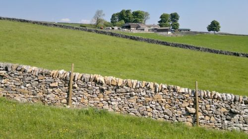 Stone wall in front of a field